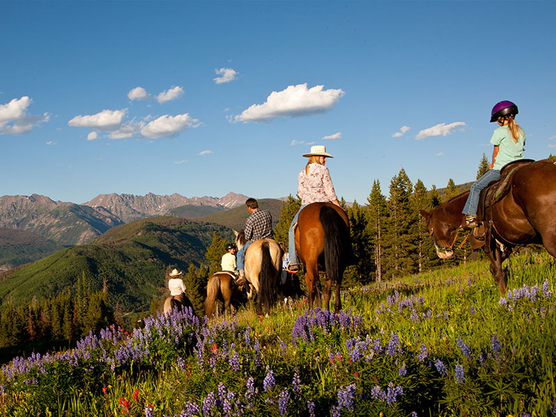 Horseback Riding near Breckenridge