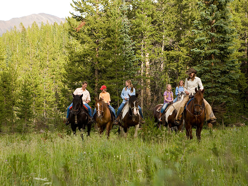 group horseback riding in Breckenridge